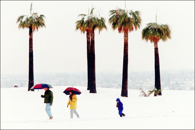 "Henry Barrios' photo shot at Panorama Park in Bakersfield is ""the"" photo of The Great Bakersfield Snow Day of 1999. It was shared with the world that day, and continues to be the image we associated with that day."