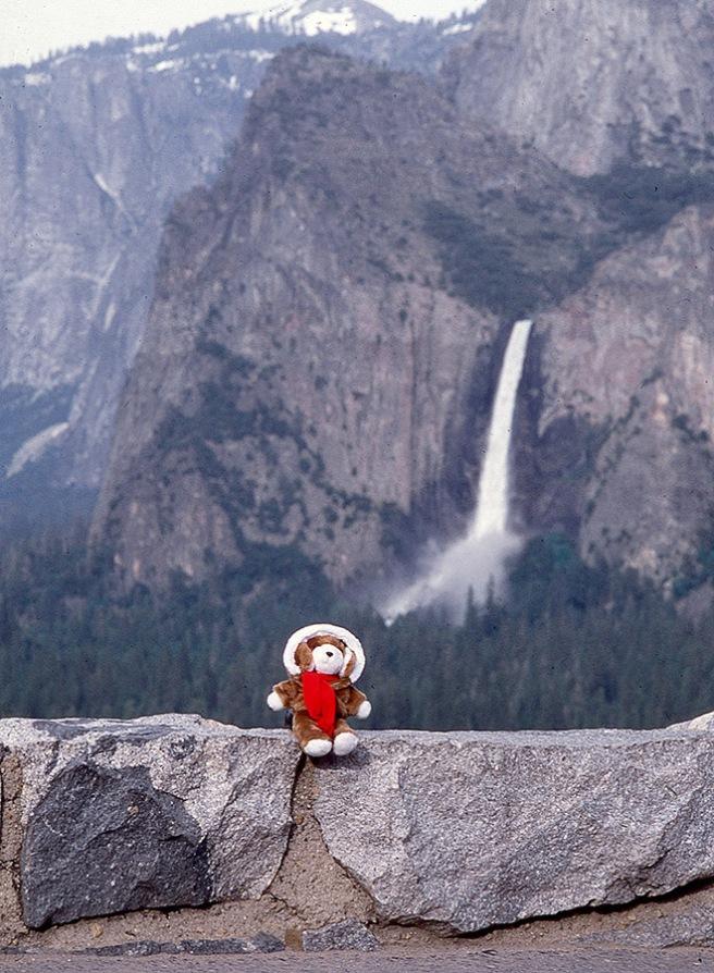 Clyde at Yosemite National Park.